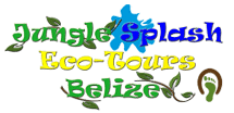 Jungle Splash Logo